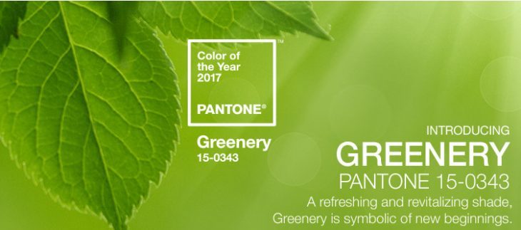 Image result for PANTONE 15-0343